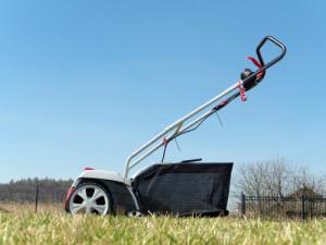 lawn scarifier_ shutterstock_184741358